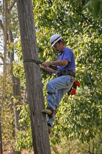 After scheduling electrical power, a utility work climbs an electrical pole